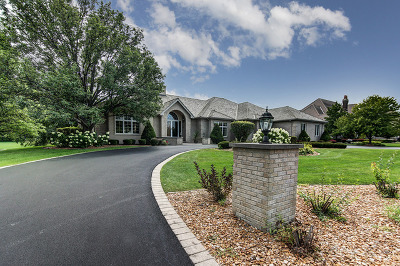 Orland Park Single Family Home For Sale: 108 Singletree Road