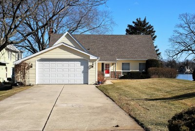 Antioch Single Family Home For Sale: 42643 North Linden Lane