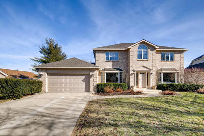 Downers Grove Single Family Home For Sale: 6729 Bradley Court