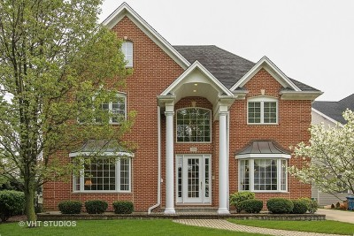 Elmhurst Single Family Home For Sale: 270 East May Street