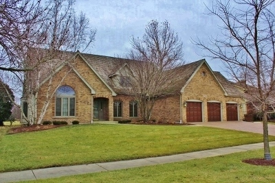 Naperville Single Family Home For Sale: 1546 Pine Lake Drive
