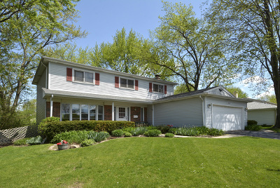 Arlington Heights Single Family Home New: 302 East Valley Lane