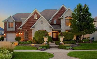Ashwood Park Single Family Home For Sale: 4207 Winterberry Avenue