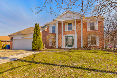 Lisle Single Family Home For Sale: 2668 Longview Drive