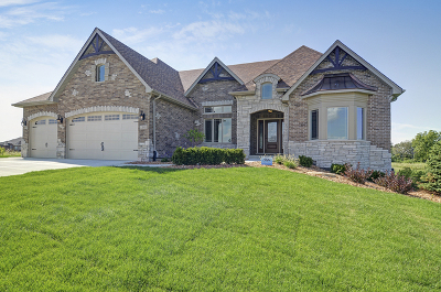 Homer Glen Single Family Home For Sale: 13838 West Stonebridge Woods Crossing Drive