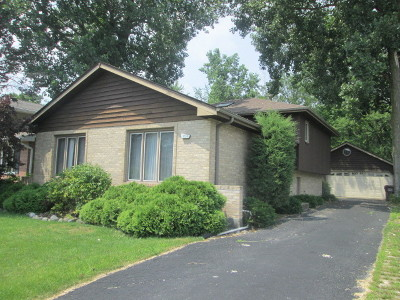 South Chicago Heights Single Family Home For Sale: 3224 Deer Path Lane
