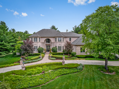 St. Charles Single Family Home For Sale: 7n235 Windsor Drive