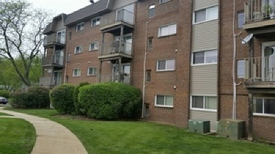 Lisle Condo/Townhouse For Sale: 2301 Beau Monde Lane #408