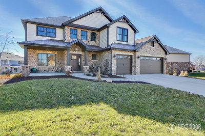 New Lenox Single Family Home For Sale: 1772 Brogan Drive