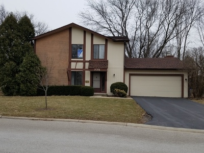 Roselle Single Family Home For Sale: 775 Chisholm Trail