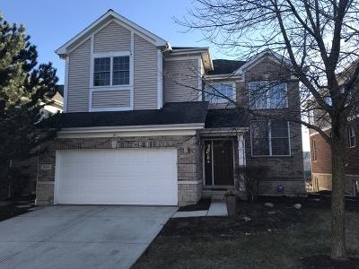 Lisle Single Family Home For Sale: 1209 Lake Shore Drive