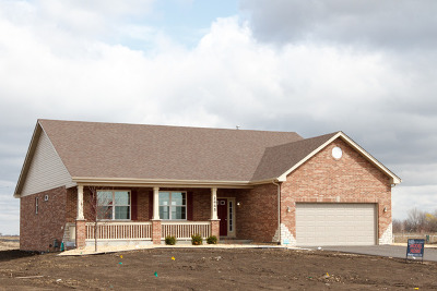 New Lenox Single Family Home For Sale: 838 Stacey Road