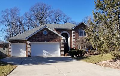 Palos Heights, Palos Hills Single Family Home For Sale: 12360 South Nagle Avenue