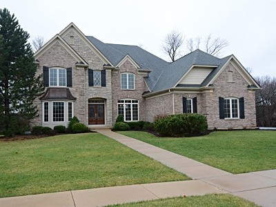 St. Charles Single Family Home For Sale: 40w877 Fox Creek Drive