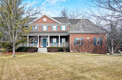 Clarendon Hills Single Family Home For Sale: 114 Allen Court