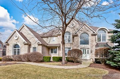 Geneva Single Family Home For Sale: 39w148 Fryendall Court