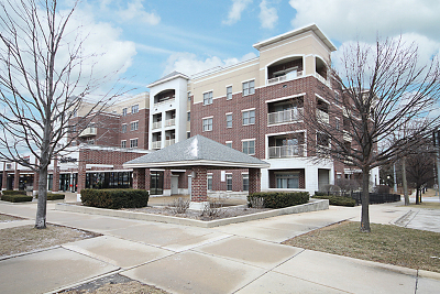 Downers Grove Condo/Townhouse For Sale: 965 Rogers Street #205