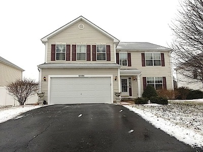 Joliet Single Family Home For Sale: 6506 Roth Drive