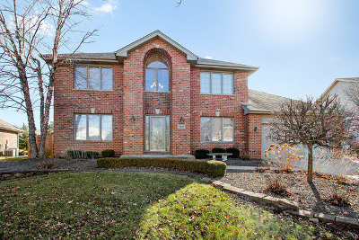 Orland Park Single Family Home For Sale: 11227 Twin Lakes Drive