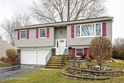 Schaumburg Single Family Home Contingent: 128 Ellington Drive