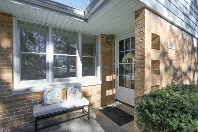 Lake Forest Single Family Home For Sale: 236 Park Avenue