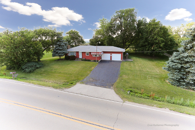 Lockport Single Family Home For Sale: 16215 West Bruce Road