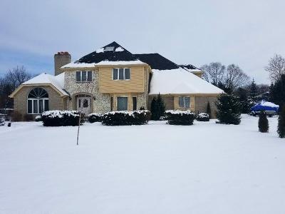 Homer Glen Single Family Home For Sale: 13733 South Hampton Court