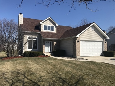 Elburn Single Family Home For Sale: 869 Warne Court