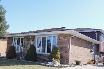 Alsip  Single Family Home For Sale: 4839 West 121st Place