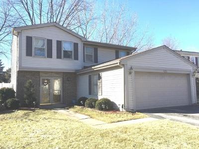 Roselle Single Family Home For Sale: 450 Garden Avenue South