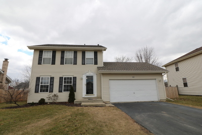 Plainfield Single Family Home For Sale: 4414 Mallard Lane