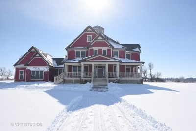 Hampshire Single Family Home For Sale: 45w595 South Serosun Farms Lane