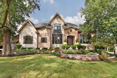 Glen Ellyn Single Family Home For Sale: 920 Jenna Court