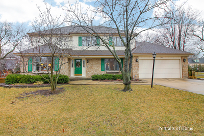 Hinsdale Single Family Home For Sale: 5803 South Garfield Street