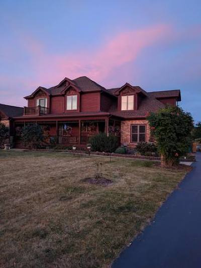 McHenry Single Family Home For Sale: 1920 Stone Drive