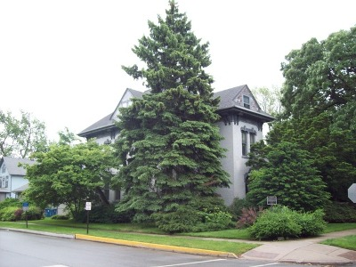 Blue Island Single Family Home For Sale: 12905 Greenwood Avenue