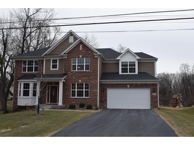 Glen Ellyn Single Family Home For Sale: 21w751 2nd Street