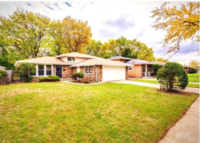 Dolton Single Family Home For Sale: 14823 Ellis Avenue
