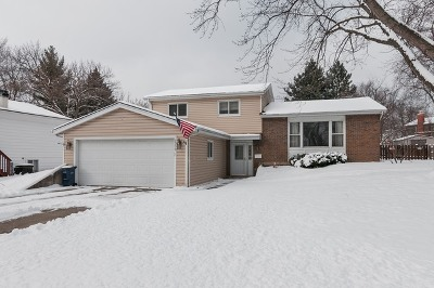 Wheaton Single Family Home For Sale: 1303 Downing Court