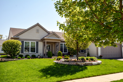Huntley Single Family Home For Sale: 14092 Viola Place