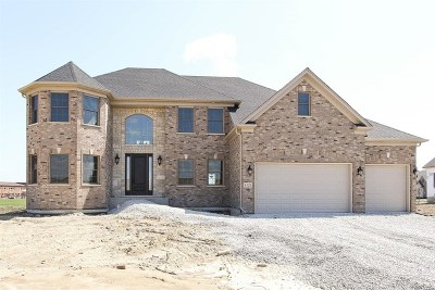 Naperville Single Family Home For Sale: Lot 253 Chinaberry Lane