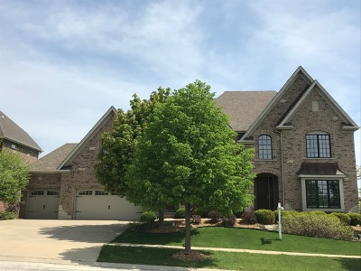 Elgin Single Family Home For Sale: 3683 Peregrine Way