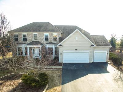 Oswego Single Family Home For Sale: 604 Hamshire Court