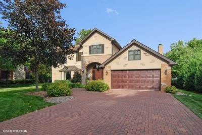 River Forest Single Family Home For Sale: 923 Ashland Avenue