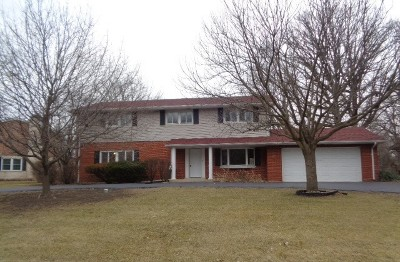 Olympia Fields Single Family Home For Sale: 20611 Corinth Road