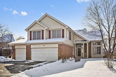 Bartlett Single Family Home For Sale: 1119 Stonegate Court
