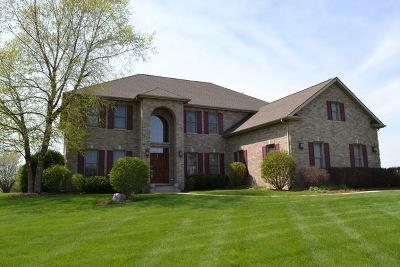 Elgin Single Family Home For Sale: 11n480 Hunter Trail