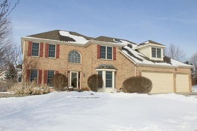 Geneva Single Family Home For Sale: 180 Fairview Court