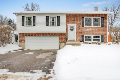 Wheaton Single Family Home For Sale: 901 Casa Solana Drive
