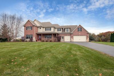 Elgin Single Family Home For Sale: 10n701 Prairie Crossing